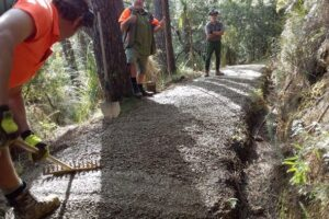 Popular walking route resurface on track for Aug finish