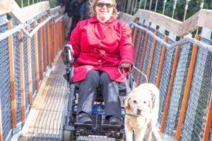 Accessible suspension bridge opens in regional park