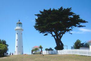 DOC seeks proposals for Tiritiri Matangi Island ferry service