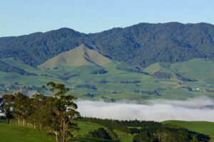 Move over Great Walks – Great Sanctuaries Aotearoa is coming